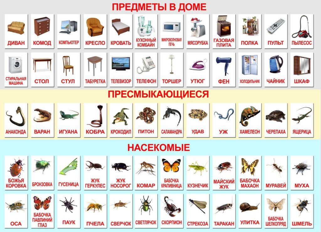 Методика Сесиль Лупан. Методики раннего развития.