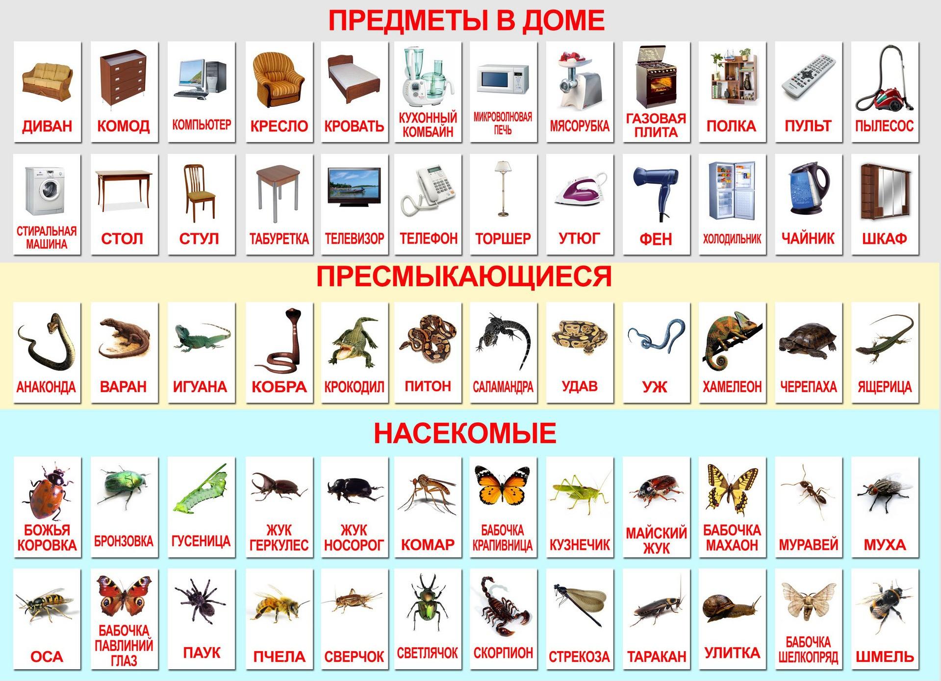 Методика Сесіль Лупан