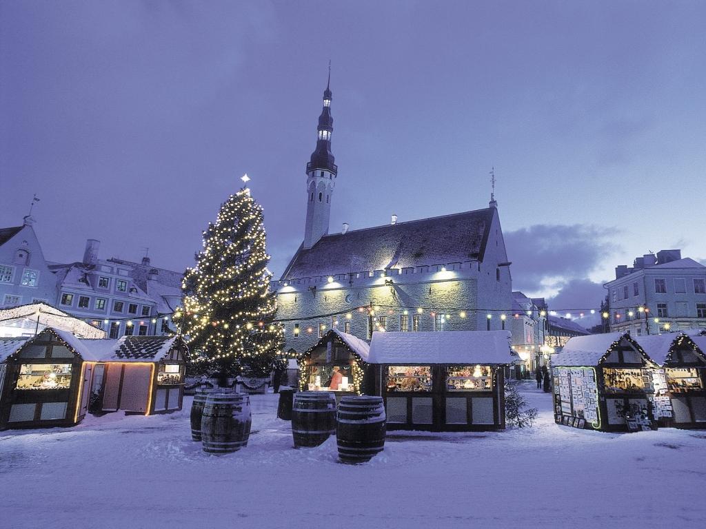 Куда поехать с ребенком на зимние каникулы в Украине? Ужгород