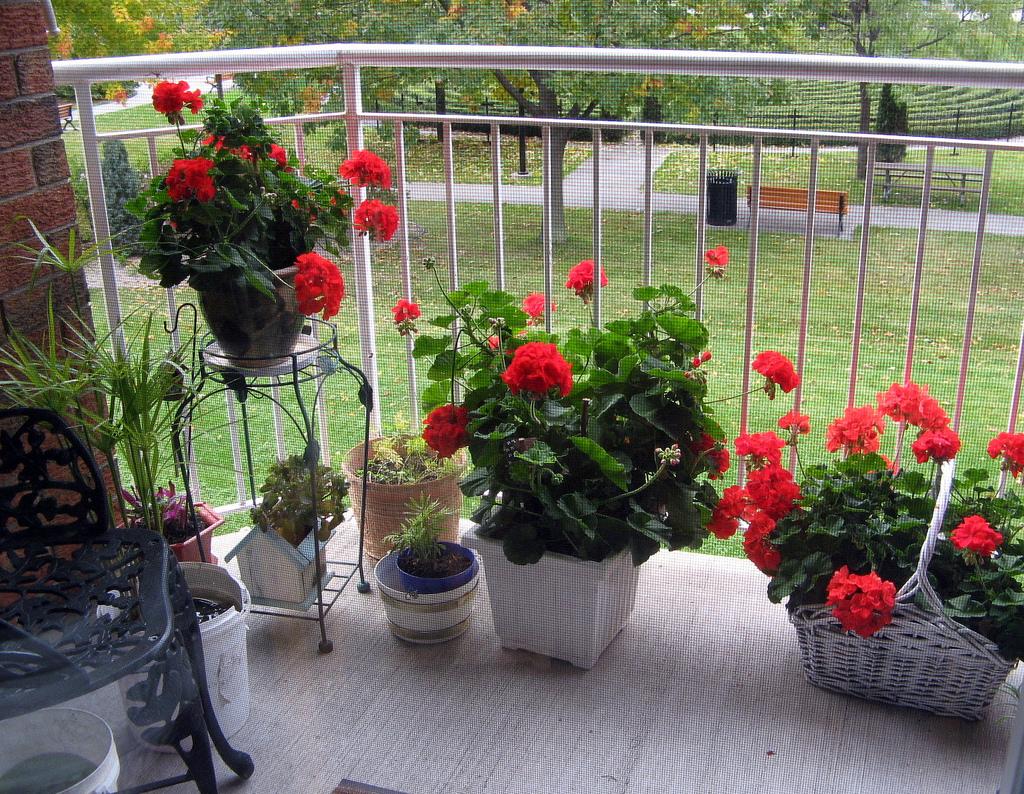 інтер'єр балкона